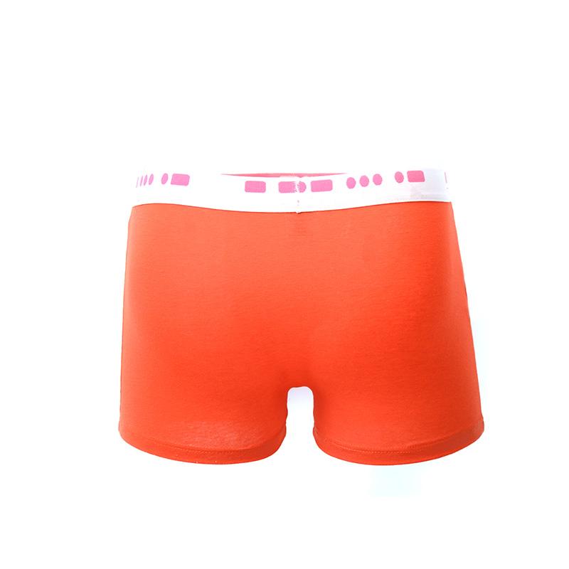Men Panties Boxer Briefs