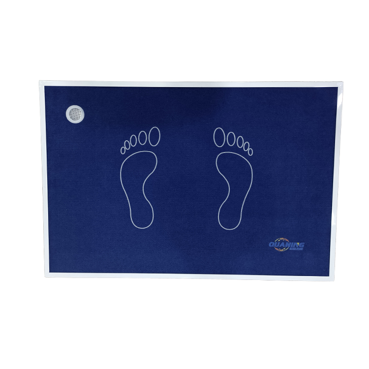 Sanitizing Disinfection Area Mat